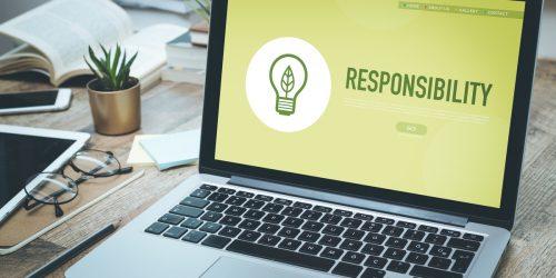 Responsabilité Sociétale Environnementale (RSE)
